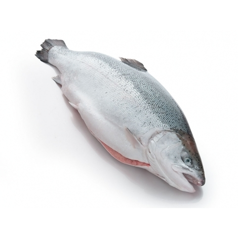 Chilled salmon with head, 1kg